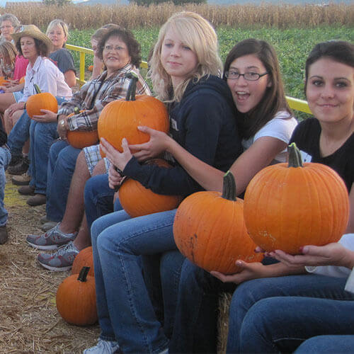 Enjoy delicious pick-your-own produce and farm fresh veggies at our pick-your-own pumpkin location!